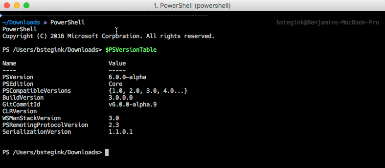 PowerShell Terminal